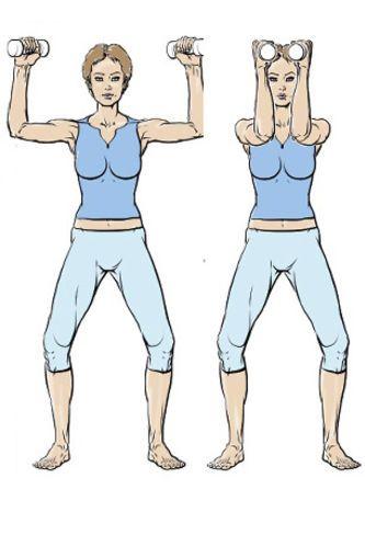 Exercice 2 :  pour de beaux pectoraux