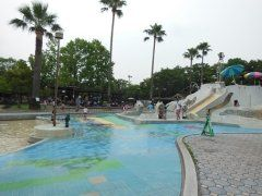 兵庫県川西市にある西猪名公園ウォーターランドは安上がりで遊べる夏のおすすめスポットだよ すべり台や噴水トンネルとか結構設備が充実してるけど大人でも300円で一日遊べちゃうんだ 水深が浅いプールもあるから小さな子どもでも安心だね  #兵庫 #プール #夏休み #レジャー tags[兵庫県]