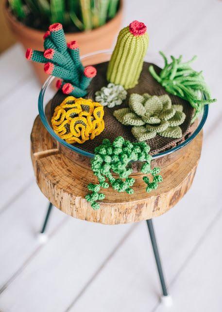 Terrario de Cactus y Suculentas Amigurumi - Patrón Gratis en Español aquí: http://elblogdedmc.blogspot.com.es/2016/04/patron-de-ganchillo-terrario-de-cactus.html: