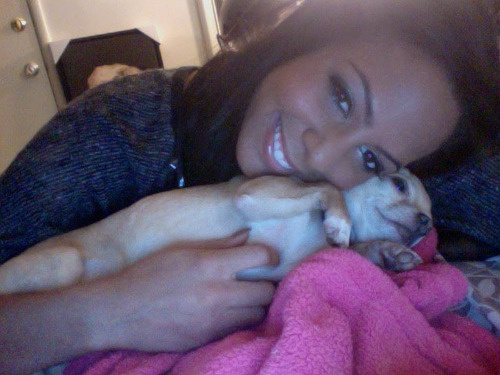 Not just your average girl and her pup. U.S. Womenʻs National Team newcomer Sydney Leroux scored five goals in the second half of the USAʻs Olympic Qualifying win vs Guatemala. Click the picture for more about one of the most exciting players in the womenʻs game.  #soccer #sports #sydneyleroux #uswnt