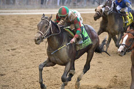 2760 Best Horse Racing U S A Images On Pinterest Horse