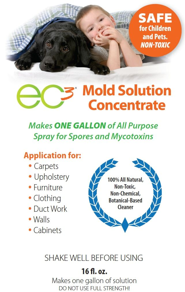Ec3 Sanitizer Fogger And Mold Solution Concentrate Bundle Solutions Mold Exposure Duct Work