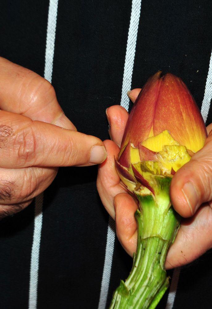 Pulizia dei Carciofi - http://blog.giallozafferano.it/suditaliaincucina/?p=750