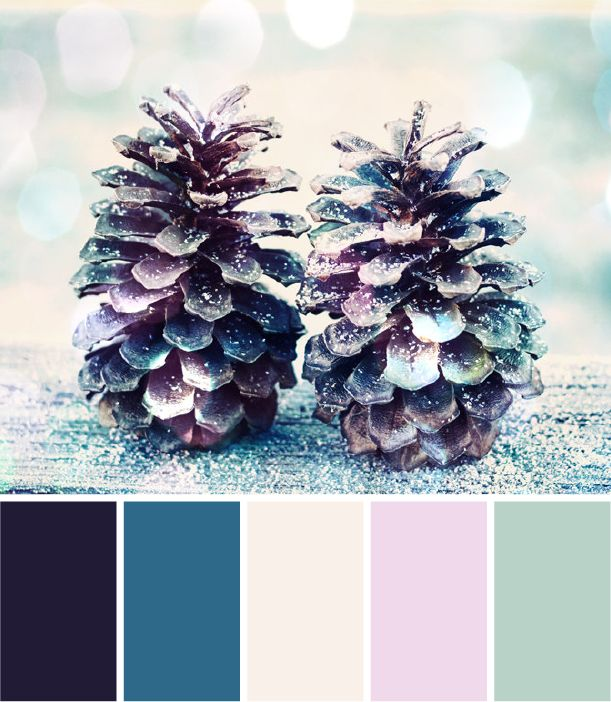 Winter Whimsy - Color Palette by NewPro Containers