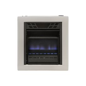 Cedar Ridge Hearth 10,000-BTU Wall-Mount Natural Gas/Liquid Propane Convection Heater