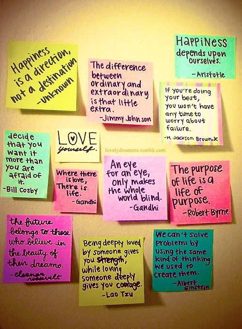 college dorm wall quotes
