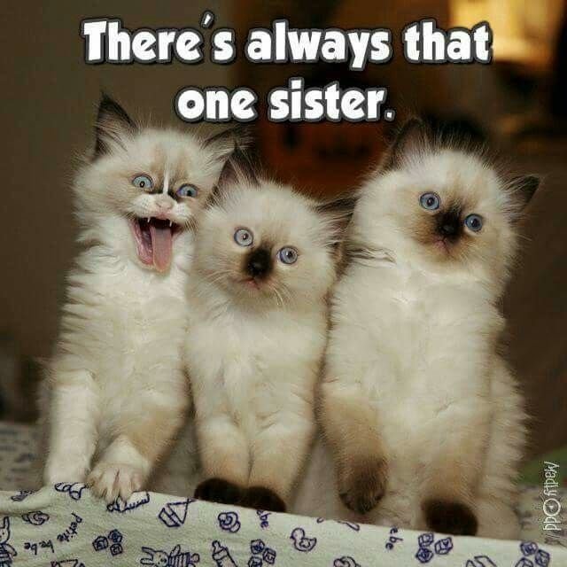i am that one sister. The oldest of 5... the weirdest of 5..... :P