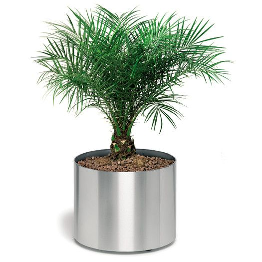 Blomus Greens Round Planter on Casters