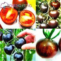 Сад растений семена томатов 100 семян / пакет Балкон Горшок Бонсай Семена здорового питания Наследие Плодовые овощи Sweet Garden