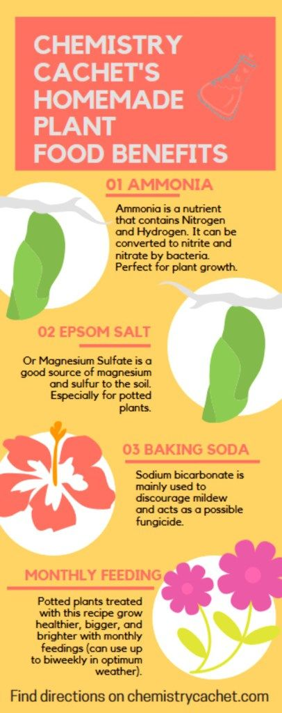 Why Chemistry Cachet's Easy homemade plant food recipe works great for potted plants! Save this infographic for later! Miracle Grow Substitute on chemistrycachet.com