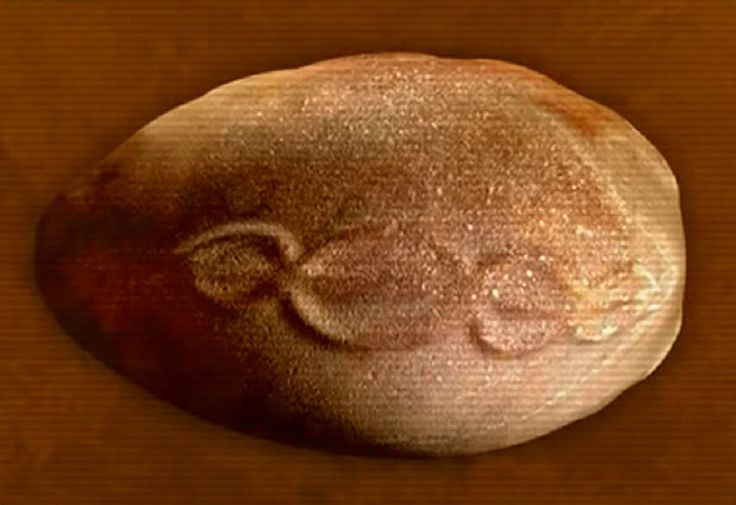The so called cosmic egg has a remarkable symbol on its surface which leaves researches bewildered with its true meaning.