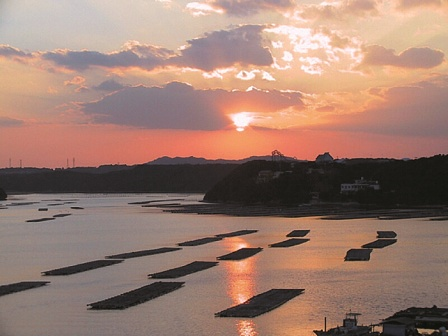 牡蠣いかだの向こうに沈む的矢湾の夕日。
