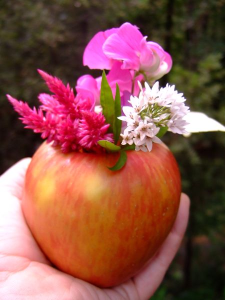 How to Make an Apple Vase:  step-by-step tutorial for kids to make for home or school. | The Micro Gardener