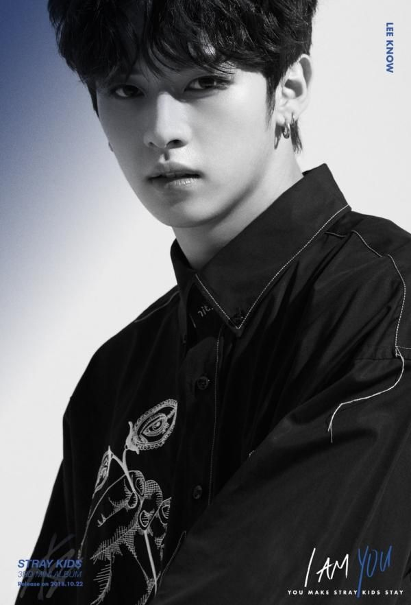 Stray Kids Members Profile (Updated!) | references in 2019 | Kpop