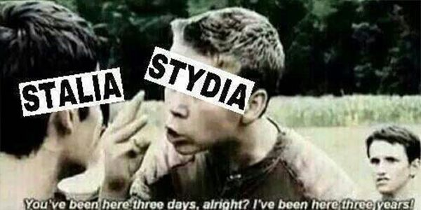 13 Memes That Prove Stydia Would Be Better Than Any Couple on Teen Wolf
