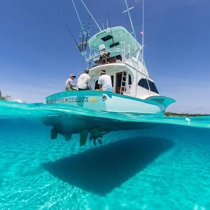 Best Boat Lightning Images On Pinterest - Blue fin boat decalsblue fin sportsman need some advice pageiboats