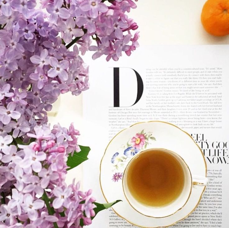 "The Tea Mavens on Instagram: ""Beautiful lilac blooms and a cup of tea: there's no better way to start your morning! Have you tried putting lilacs in your tea yet? We've…"""