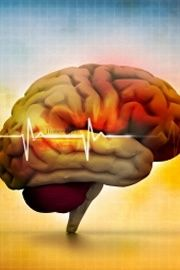 Falta de memória generalizada? Dificuldade em lembrar-se onde ficaram as chaves, esquecer um compromisso marcado para aquele dia, não se lembrar da conversa de ontém com um familiar... Estes são alguns dos problemas que nos têm relatado em consulta de neuropsicologia. Contacte-nos! 213 571 887 ou 934 643 981 #psicologia #neuropsicologia #memoria #esquecimento #lapsos neuropsicologia, memória, falta de memória, lapsos de memória, psicologia, neuro