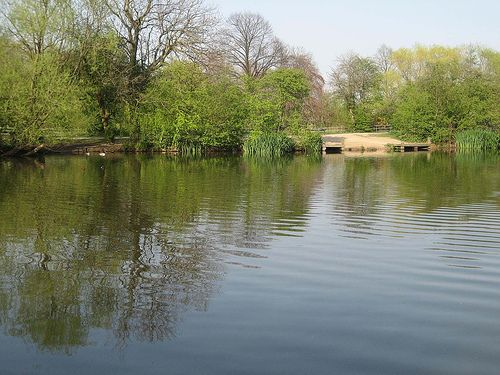 Wandsworth Common Pond - Wandsworth Common Pond lake is a central London park providing coarse angling on a season ticket. The Common holds two lakes, spilt by a footpath. The... Check more at http://carpfishinglakes.com/item/wandsworth-common-pond/