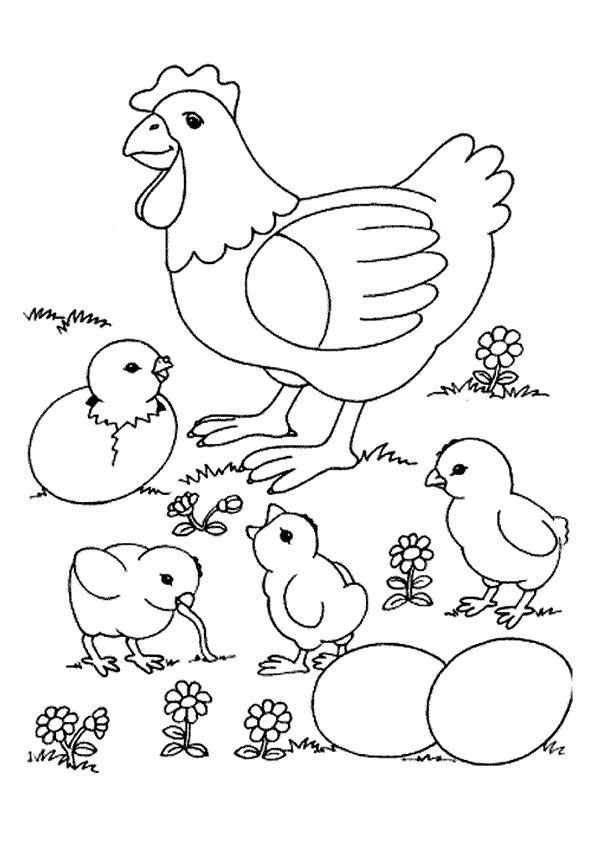 Coloriage d'une maman poule avec des poussins qui viennent juste d'éclore
