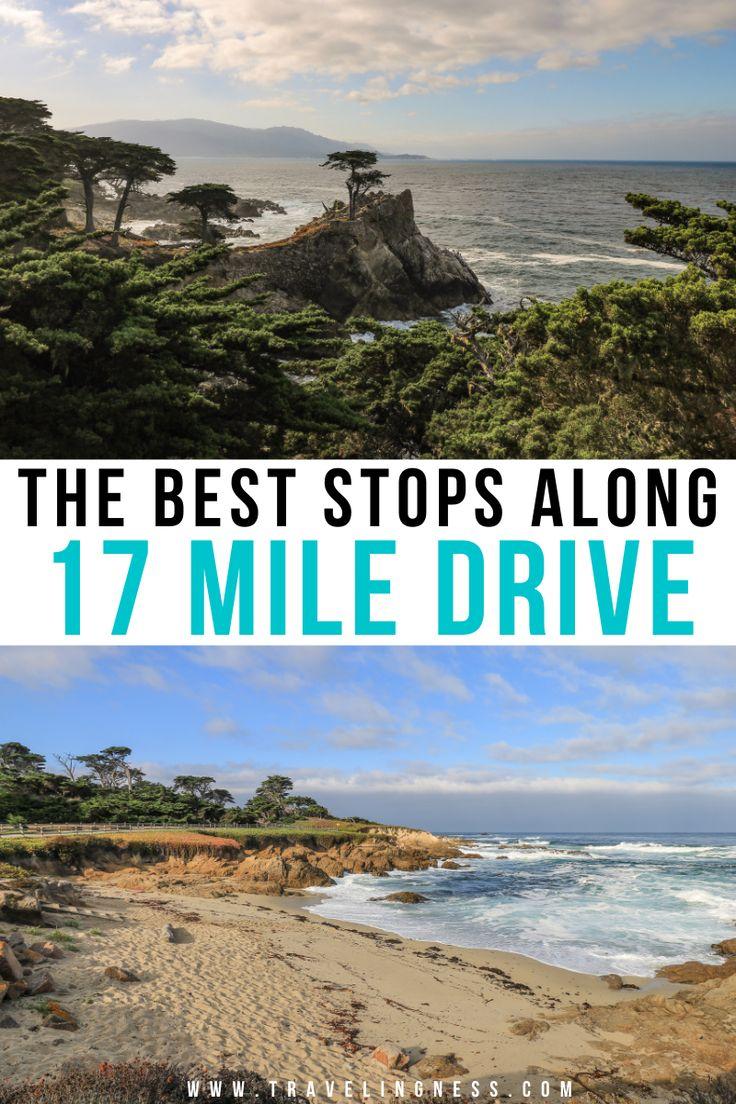The Best Stops Along 17 Mile Drive In Pebble Beach California California Travel Road Trips California Travel Beach Trip
