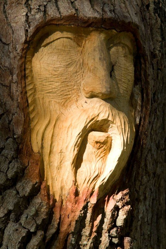 Images about tree carving sculptures on pinterest