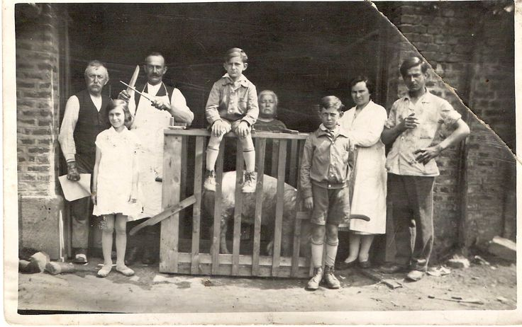 My grandfather Joseph WILLIEME is ready to slaughter the pig. My uncle Camille is sitting on the wooden box. The girl on the left is my aunt Orpha and the boy on the right is my father Evence, with my grandmother Marie-Eugénie PIGNOLET behind him. Pic taken around 1930.