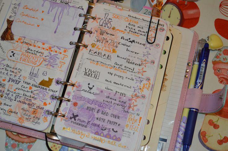 week 44 used filofax planner 2015