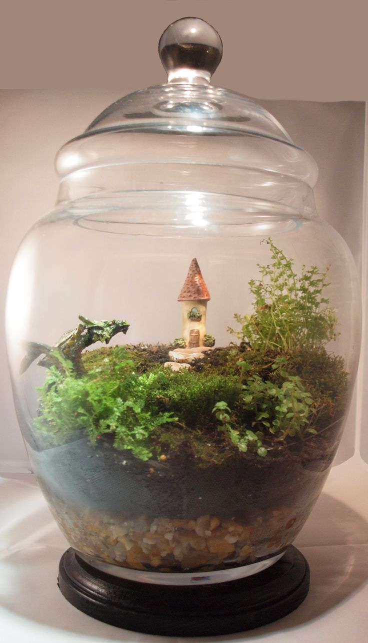 Fairy garden mother fairygardenmthr on pinterest