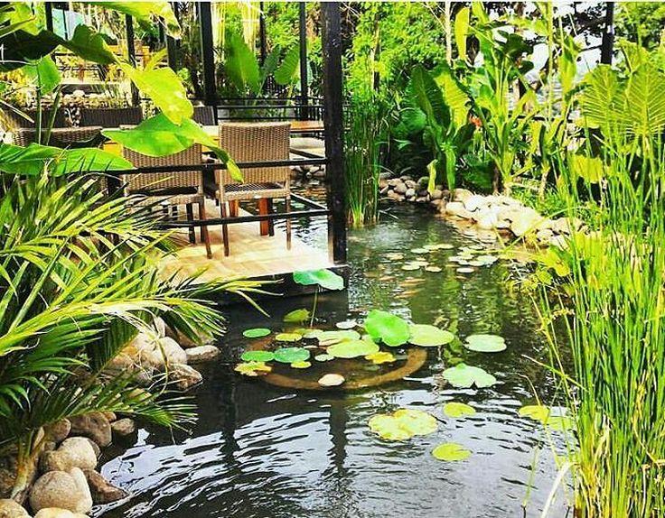 Bukit Randu hotel Lampung South Sumatera. Lush Bali style ponds and gardens.  By Bali Landscape Company http://ift.tt/1QzTwns  #ponddesign #pond #waterplants #landscape #landscapedesigner #landscapearchitecture #gardenlovers #bali #taman #tropicaldesign #tropicallandscape #balilandscaper #gardenideas #gardenlovers #tropicaldesign #tropicallandscape #landscapearchitect #garden #gardenideas #gardeninspiration #gardenlove #gardendesign #landscapedesign - #regrann