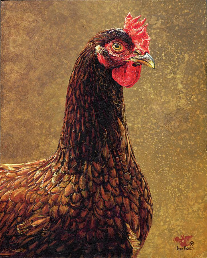 Rhode Island Red Rooster Print from Original Oil on Wood Painting