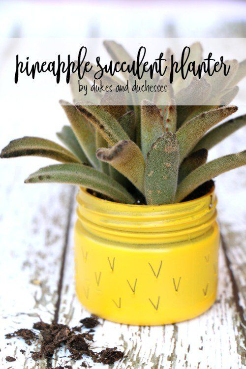 Surprise a friend or teacher with this fun pineapple Mason Jar succulent planter! It takes just minutes to make!