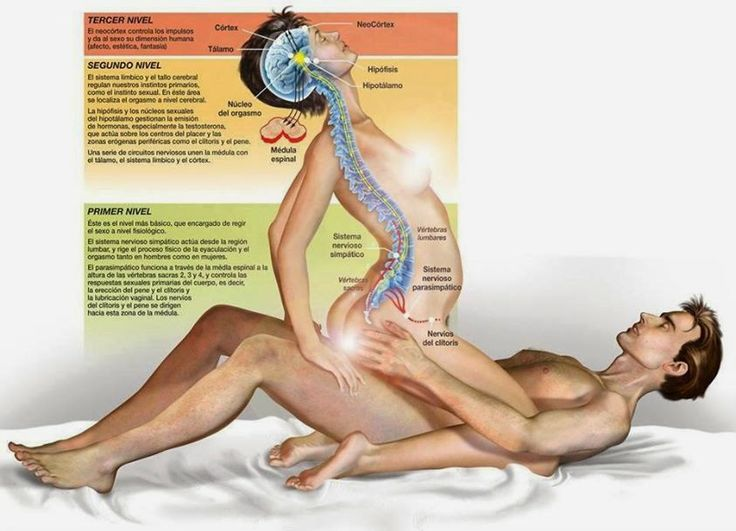 Tener relaciones sexuales es bueno para tu cuerpo, pero los beneficios dependen de la frecuencia en que lo hagas. ~ Nueva Mentes