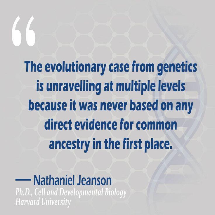 evolution v creation essay