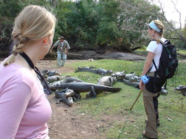 "Pantanal, Brazil - ""Caiman Island"""