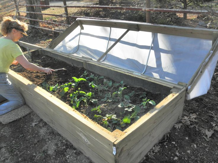 A Cold Frame Is A Protective Structure You Can Build Around Plants In A High  Altitude Environment To Help Extend The Growing Season.