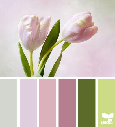 tulip tones. win.