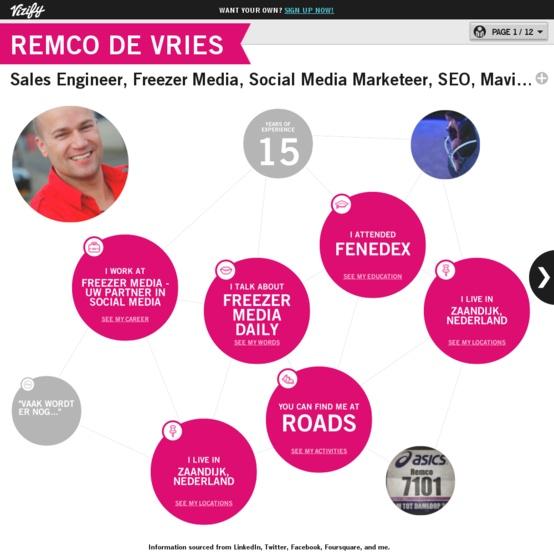 Graphical bio: Remco de Vries - Freezer Media #Vizify