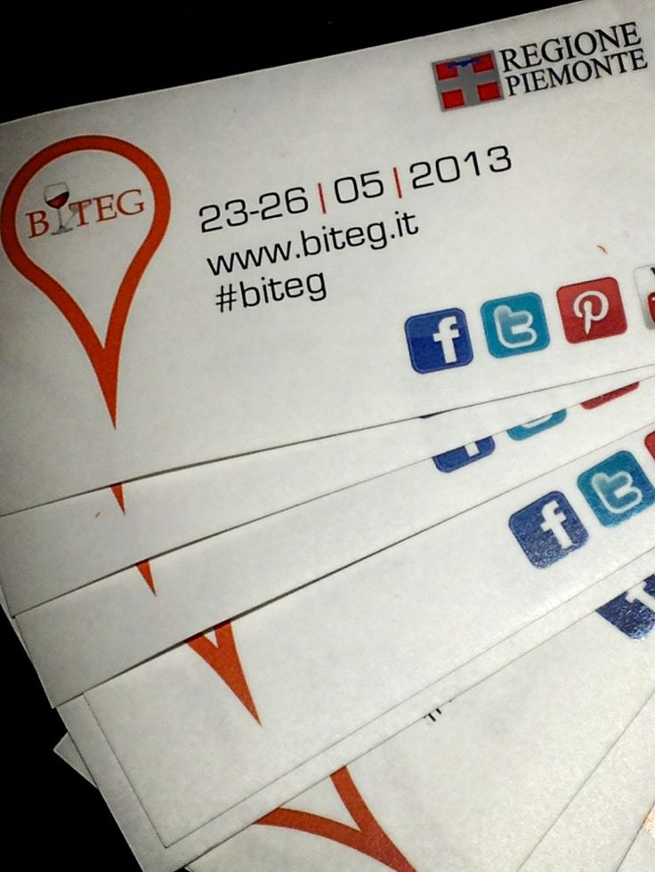 BITEG 2013