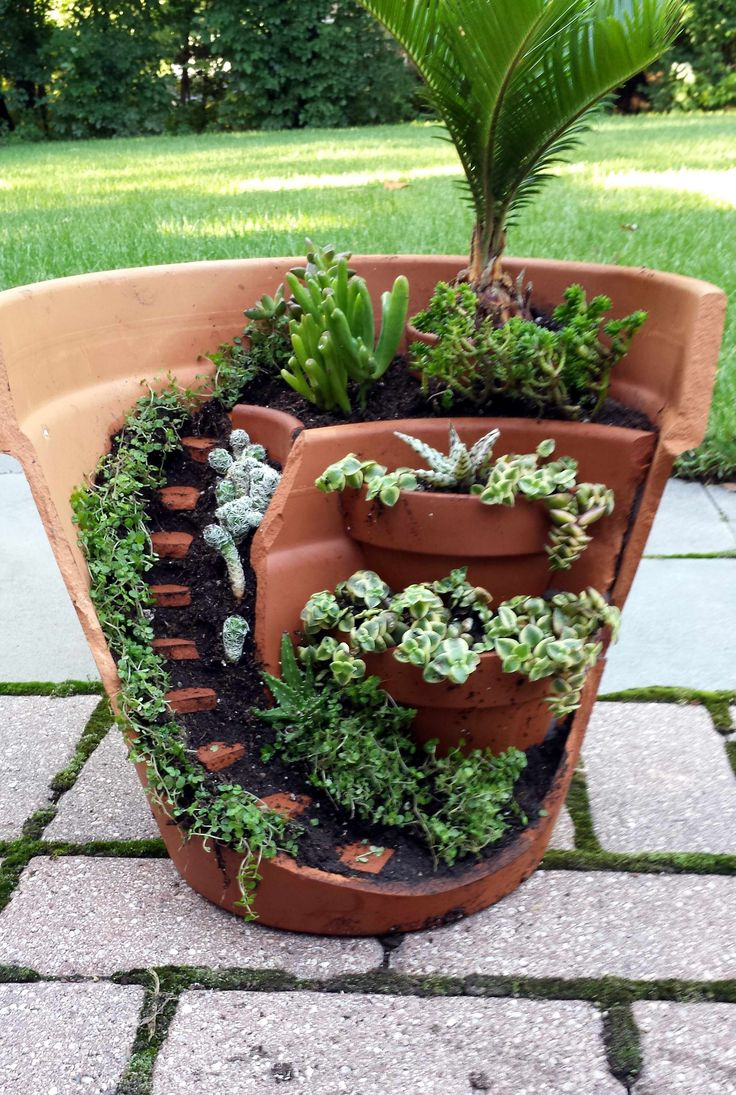 this dish garden has a half broken pot that looks like stares and can be used