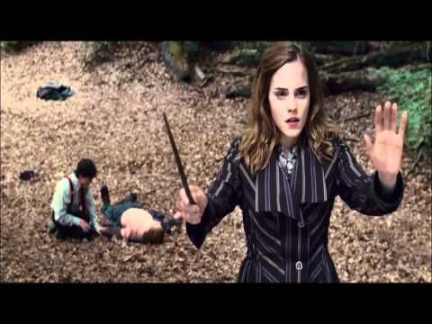If you consider yourself a HP fan at all, this video is beyond words...