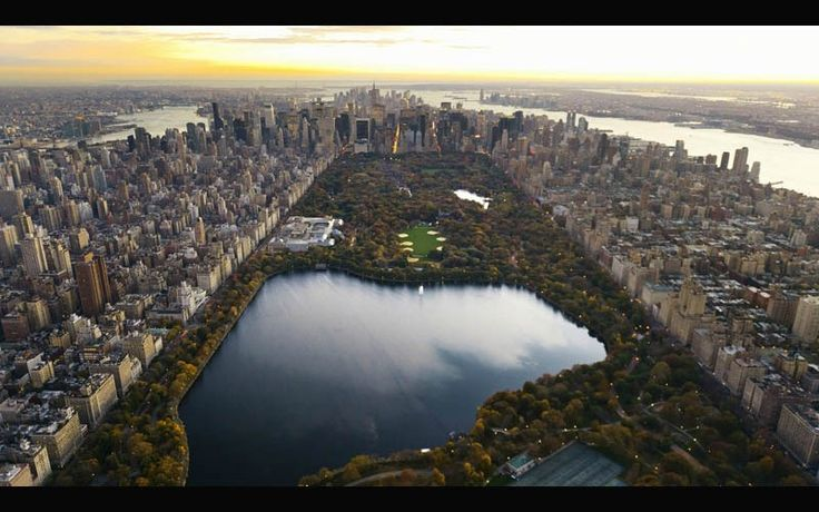 Central Park. It looks like this is everybody's backyard from this picture.  Central Park from Above