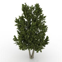 Download 3D Tree