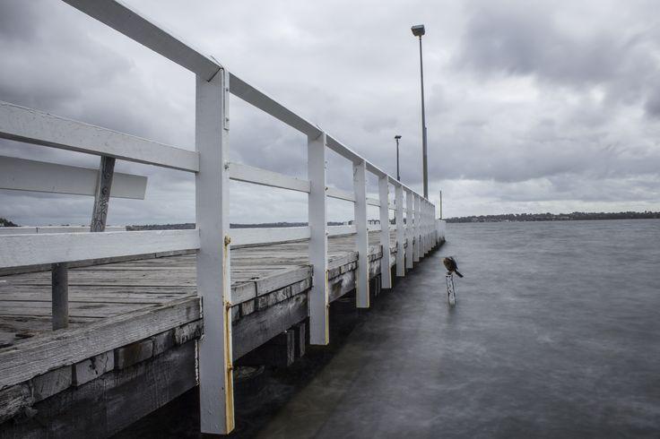 Como jetty, Perth. Taken by Matthew Schneider.