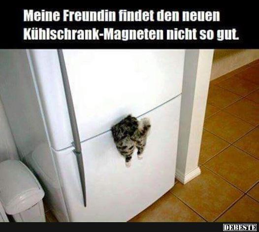 Meine Freundin findet den neuen Kühlschrank-Magneten nicht so gut..