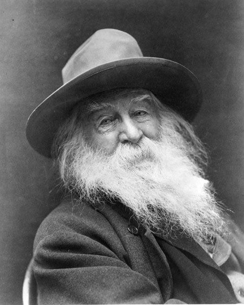 """""""Re-examine all that you have been told... dismiss that which insults your soul.""""     ~ Walt Whitman"""