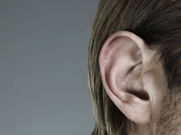 Why do adults get ear infections?