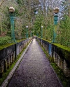 Washington Park Arboretum, Portland, Oregon. Best time to go: February