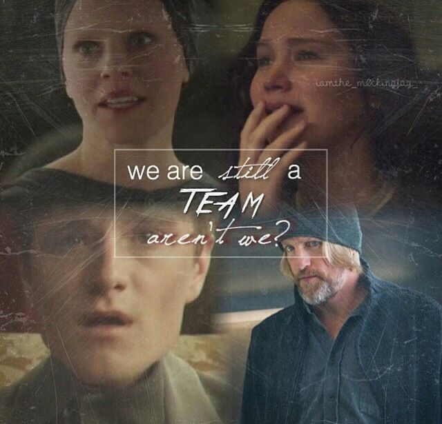 Me after Mockingjay : Part One... Credits start rolling. Mom looks over at me. Mom : Are you okay? Me : No, I'm not okay.<<<me and friend just looked at each other and cried...a lot...