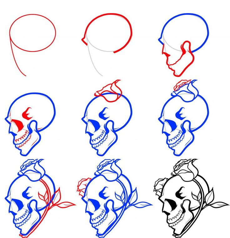 how-to-draw-a-skull-and-roses.png (876×906)